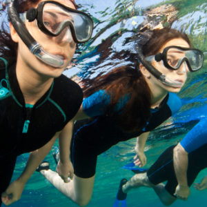 Swimming, Snorkelling & Diving